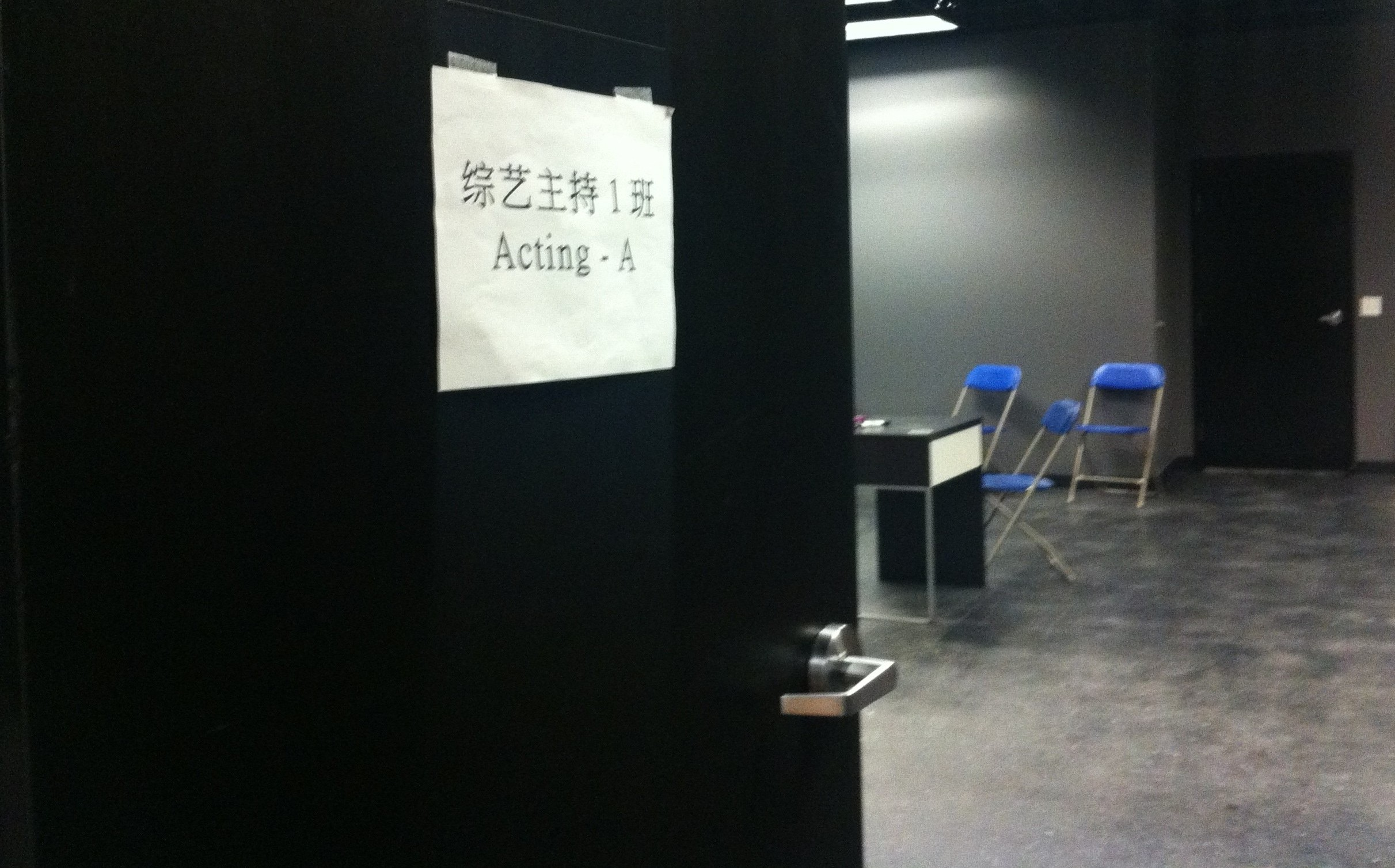 Training For The Professional Actor